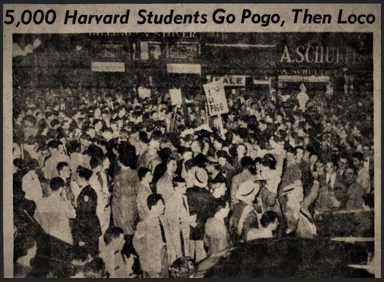 The Pogo Riot
